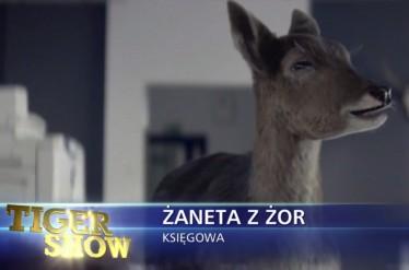 Tiger Show - Deer
