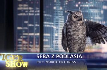 Tiger Show - Owl